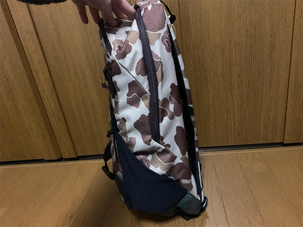 f:id:thebackpack:20190109135505j:image